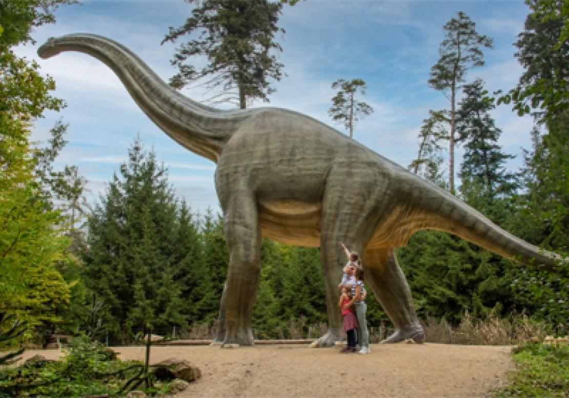 Dinosaurier Museums im Naturpark Altmühltal