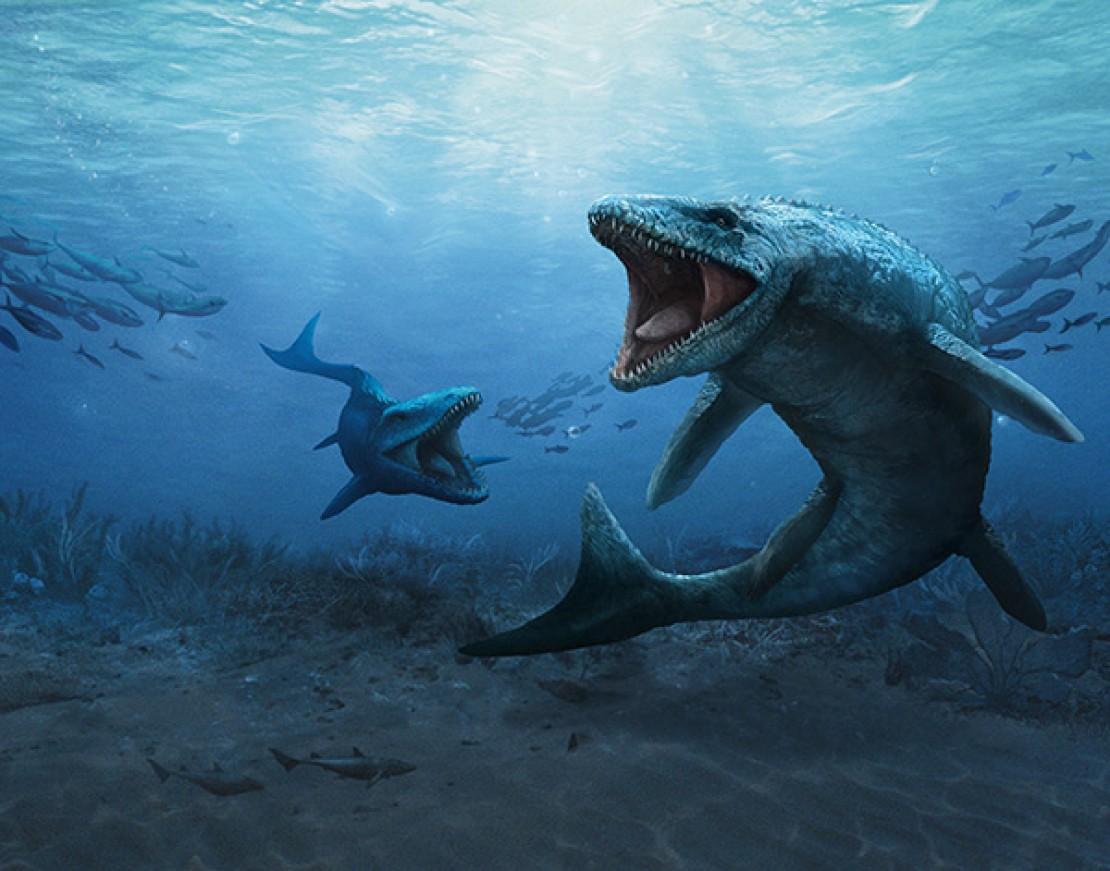Super Saurier - Mosasaurus