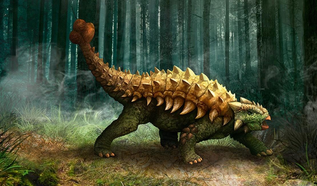 Slider Ankylosaurus