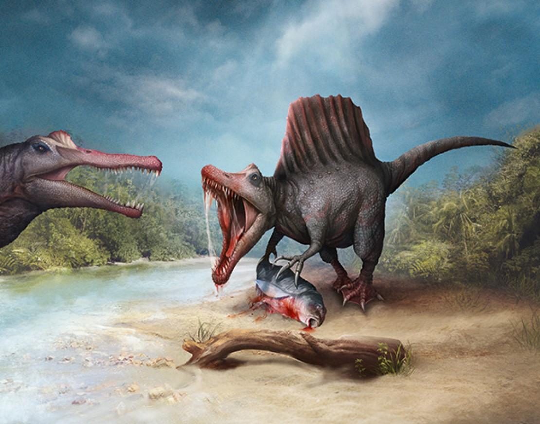 Supersaurier - Spinosaurus