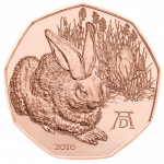Dürer's Young Hare 5 Euro Copper Coin