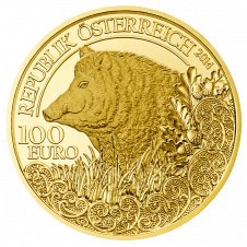 Gold Coin Wild Boar