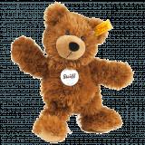 Charly the teddy bear