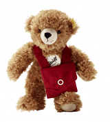 Teddy bear with bag