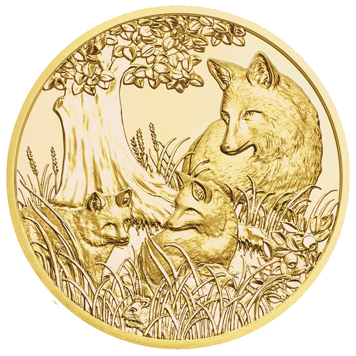 Gold Coin Fox